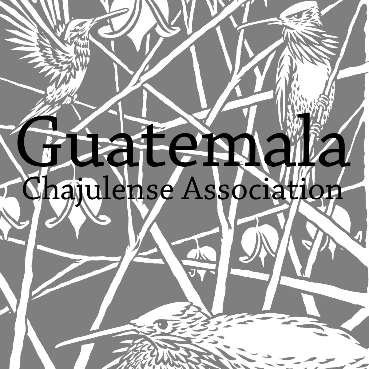 Rise Up Coffee - Guatemala