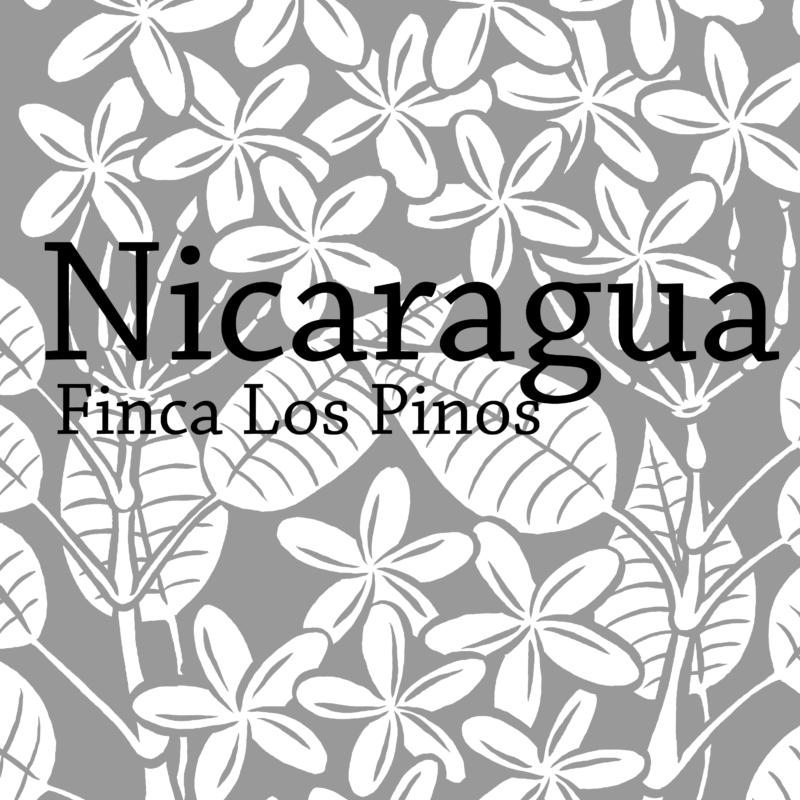 Nica-01